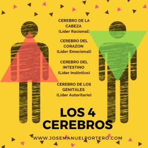 LOS 4 CEREBROS Y EL TIPO DE LIDERAZGO