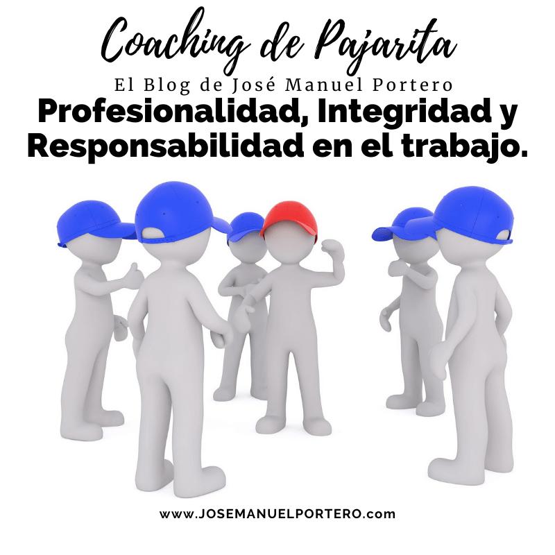 Profesionalidad Integridad y Responsabilidad en el trabajo